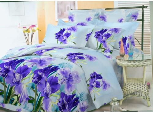 Постельное белье VERSAILLES Soft  дизайн №013